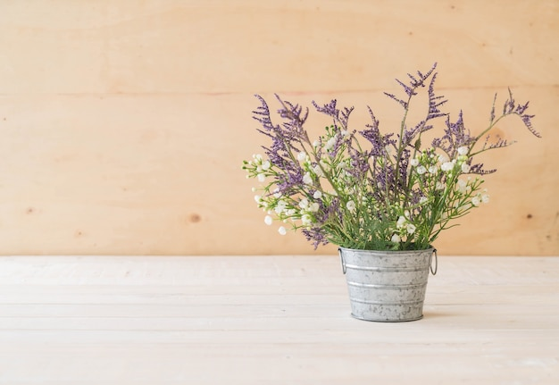 Staticeとcaspiaの花
