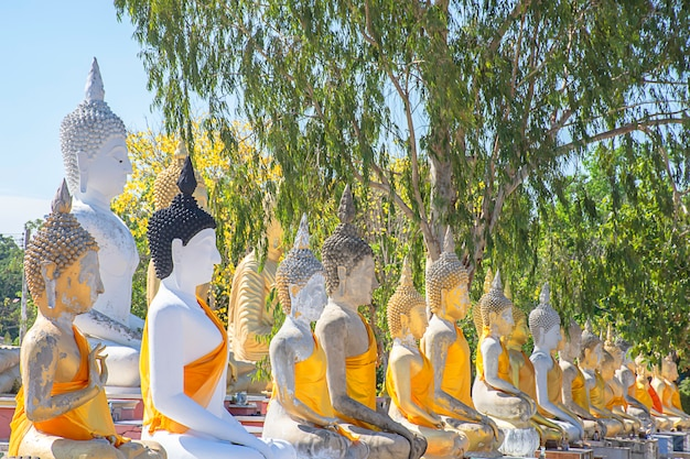 The statue of buddha  covered in yellow cloth, tree and sky at wat phai rong wua , suphan buri in thailand.