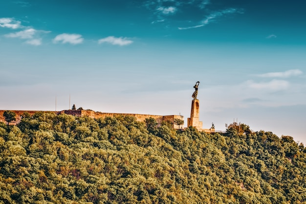 Statue of liberty on gellert hill in budapest at summer day. hungary.