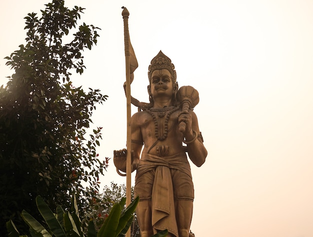 하늘에서 하나님 우먼의 동상 힌두교 신 동상