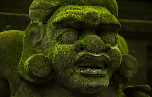 Statues and carvings depicting demons, gods and balinese mythological deities.