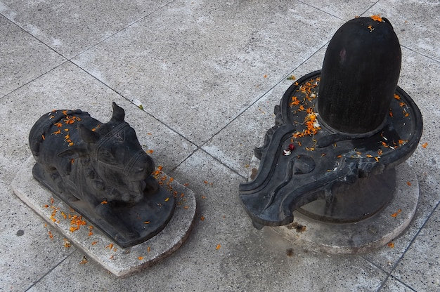 リシケシのヒンドゥー教寺院シュリマカルヴァハニガンガジーとシタラムダムアシュラムの彫像