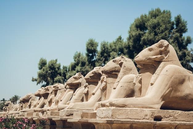 이집트 룩소르의 카르낙 신전에 있는 상형 문자가 있는 스핑크스 조각상.