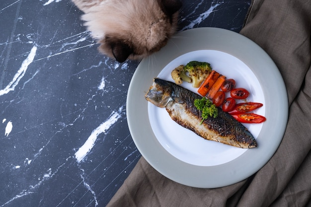 Steak pacific mackerel grilled with sidedish broccoli, carrot, tomato, chilli and parsley on ceramic dish, marble table, dark black background, foodstyling concept, home cooking