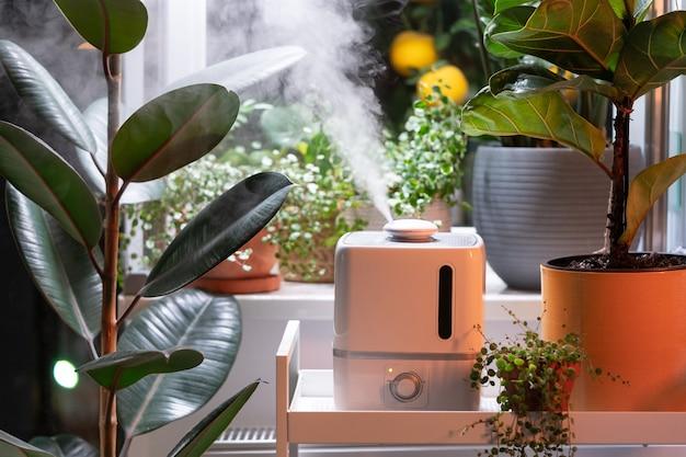 가습기에서 나오는 증기가 실내 관엽식물로 둘러싸인 건조한 공기를 촉촉하게 가꾸어 줍니다.