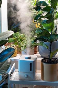 Пар из увлажнителя увлажняет сухой воздух в окружении комнатных растений домашний сад уход за растениями
