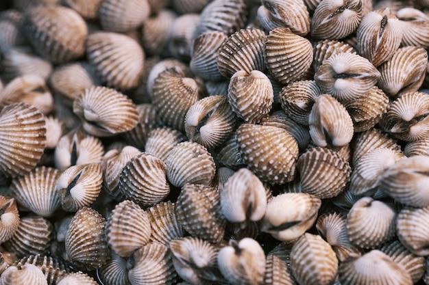 蒸し貝、ゆで貝、血貝、タイの屋台市場