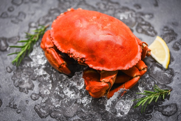 Steamed red crab with ice cubes, herbs and lemon