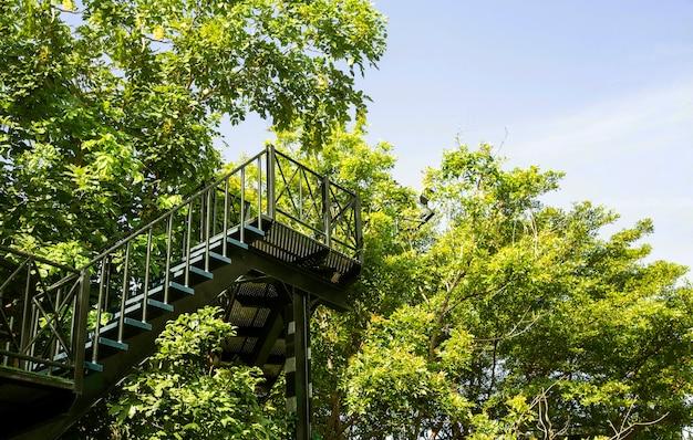 Стальная лестница на открытом воздухе в саду с высоким видом