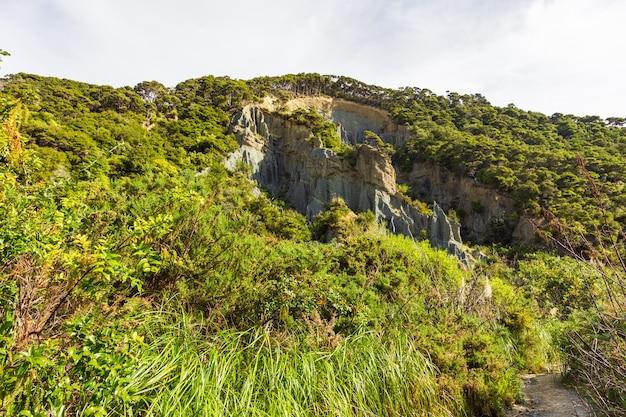 Крутые скалы северного острова, вершины путангируа. новая зеландия
