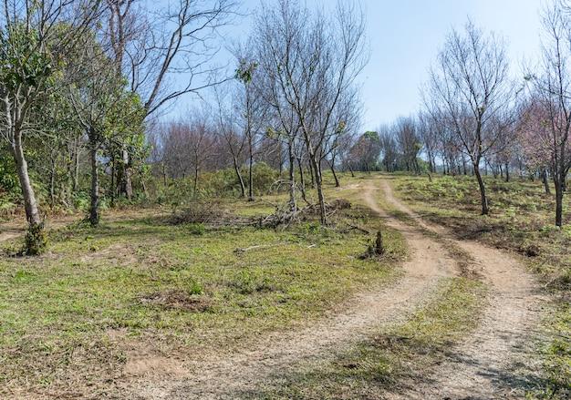 Steep dirt road.