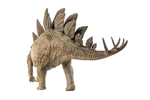 白い背景の上のステゴサウルス恐竜。