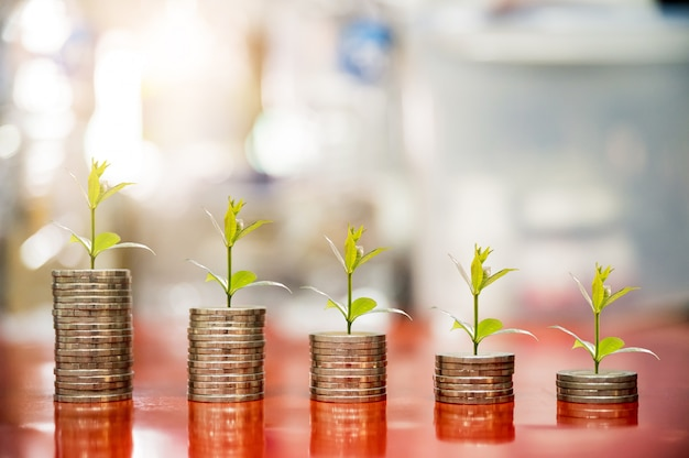 Step of coins with plant growing on top