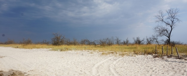 Steppe before the storm