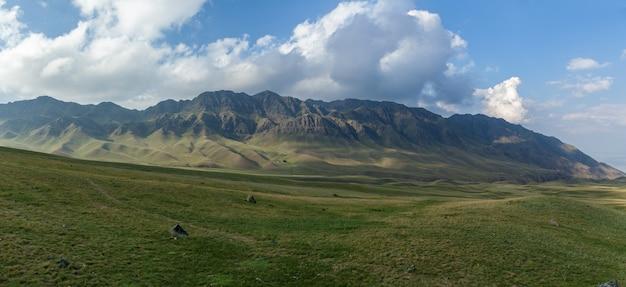 Steppe kazakhstan, trans-ili alatau, plateau assy