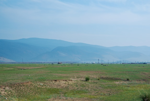 산의 배경에 대초원입니다.barguzin 계곡, buryatia, 러시아.