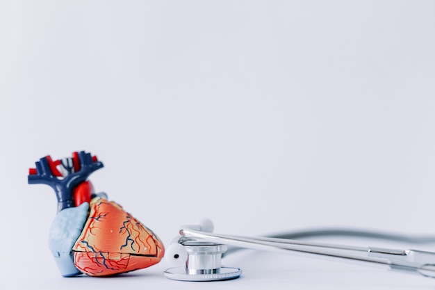 Стетоскоп и реалистичное сердце
