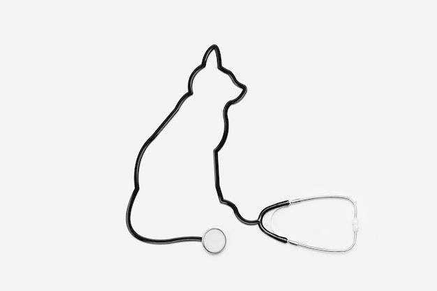 Stethoscope with cat outline tube