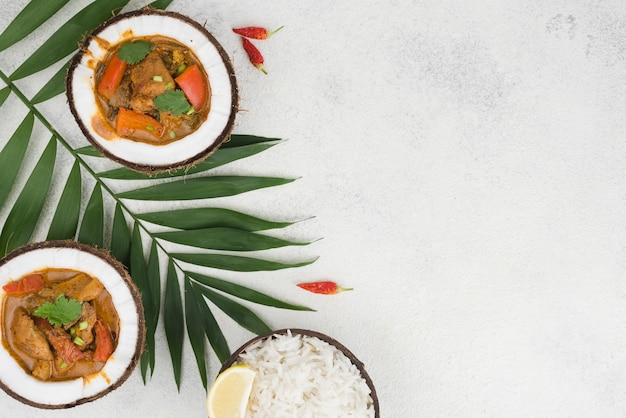 Stew and rice in coconut plates copy space