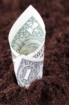 土地、農業、クローズアップからのお金と通貨の成長の概念として、肥沃な土壌から突き出て1米ドルをねじりました