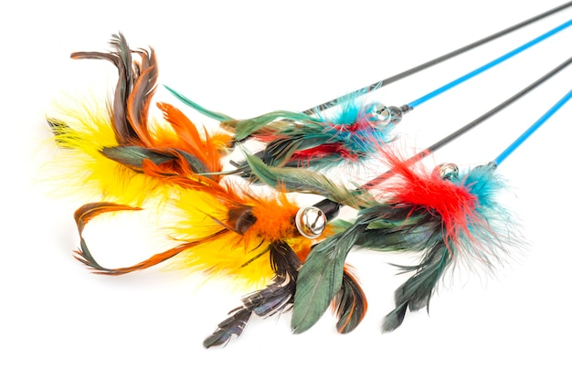 Sticks with colored feathers isolated