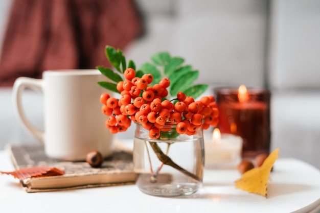 Still life book candle rowan berry and a cup of tea or coffee in the living room on a table home