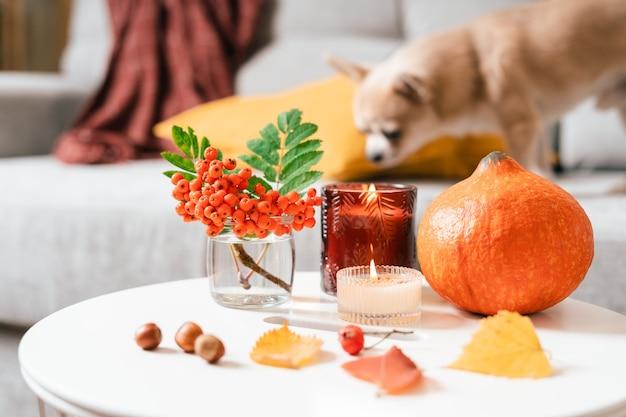 Натюрморт свеча рябина и тыква в гостиной на столе домашнего декора в уютном доме