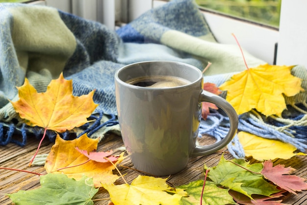 Still life a cup of coffee and autumn leaves with plaid