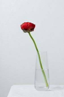 꽃병 배열에서 정 꽃