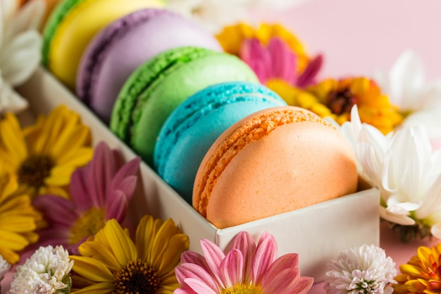 Still life and food photo of cake macarons in a gift box with flowers, a cup of tea