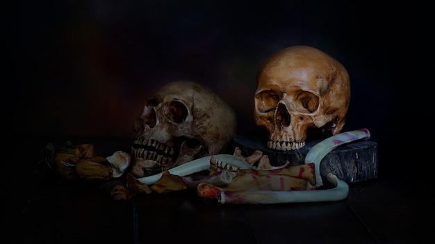Still life of human skull on dark background