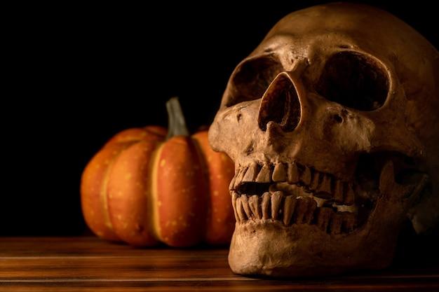 静物写真:暗い背景に木の上の人間の頭蓋骨とカボチャ。