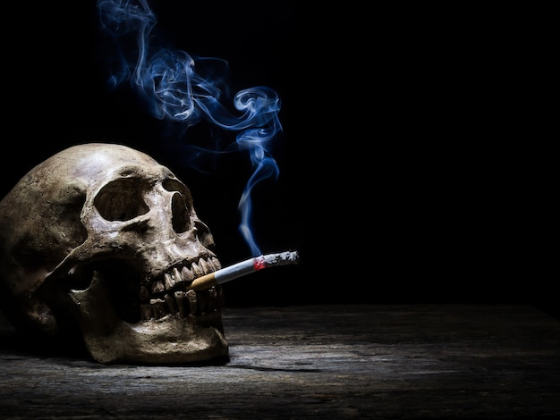 Still life skull and cigarette people smoke cigarette and get toxin body