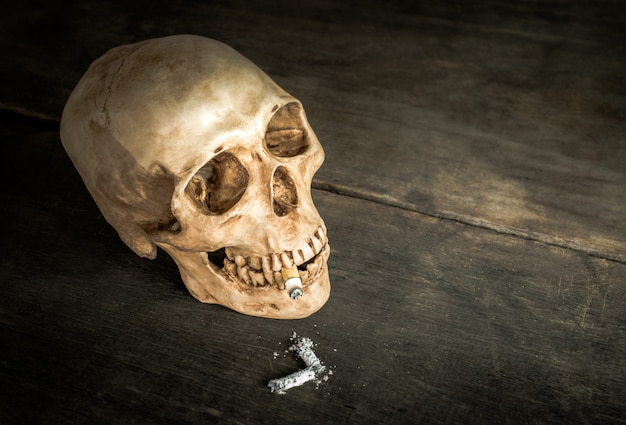 Still life skull of a skeleton with burning cigarette, stop smoking campaign concept with copy space.