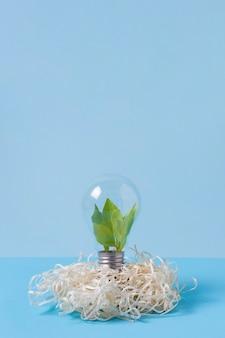 Концепция устойчивости натюрморт
