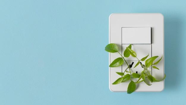 Натюрморт элементы устойчивого образа жизни