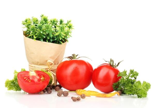 Натюрморт, помидоры, кетчуп и зелень, изолированные на белом фоне