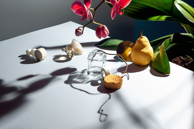 Still life of various objects, textures and plants.