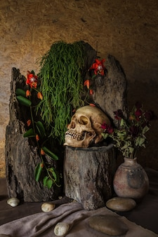 Натюрморт с человеческим черепом с пустынными растениями, кактусом, розами и сухими цветами.