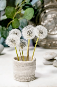 Still life with blooming fluffy dandelions flowers in handmade ceramic pot with smooth rocks and metal plate over white marble table