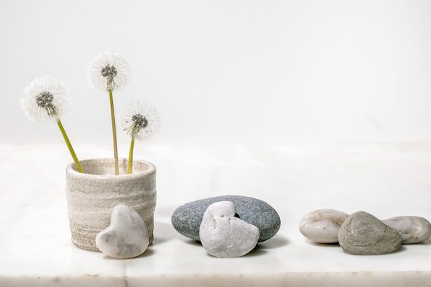 Still life with blooming fluffy dandelions flowers in handmade ceramic pot with smooth rocks over white marble surface