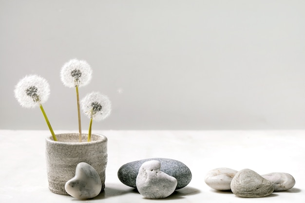 Натюрморт с цветущими пушистыми цветами одуванчиков в керамическом горшке ручной работы с гладкими камнями на белом мраморном фоне.