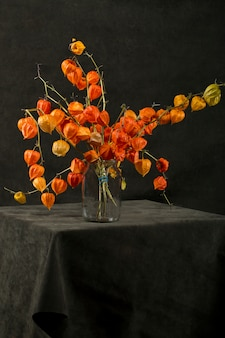 Still life with a branch of physalis in a black bottle