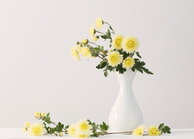 白い背景の菊のある静物