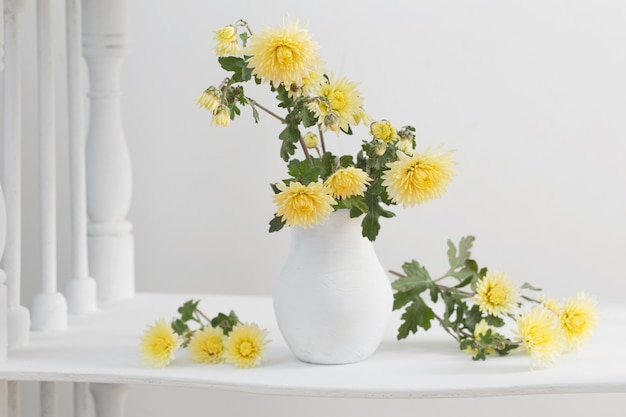 Still life with chrysanthemums on white background