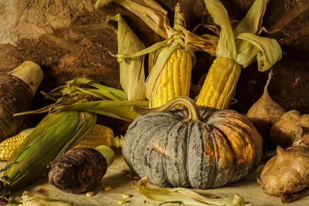 Still life with corn, pumpkin, taro and yam