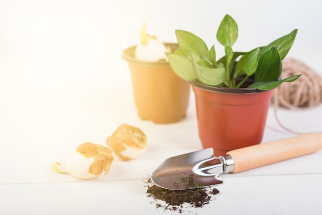 Still life with gardening objects