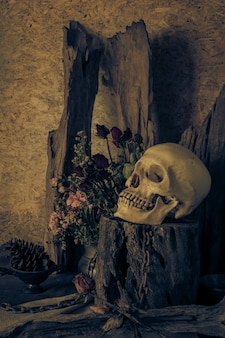 Still life with a human skull with a red rose.
