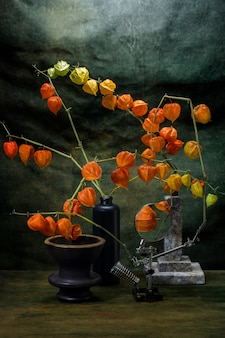 Still life with physalis branches