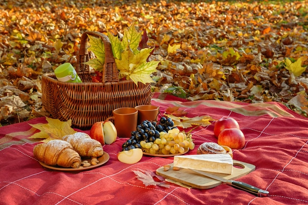 Still life with picnic autumn mood. the checkered blanket has a basket, grapes, almonds, bun, croissant, cups,  apples, knife, cutting board and a piece of brie.